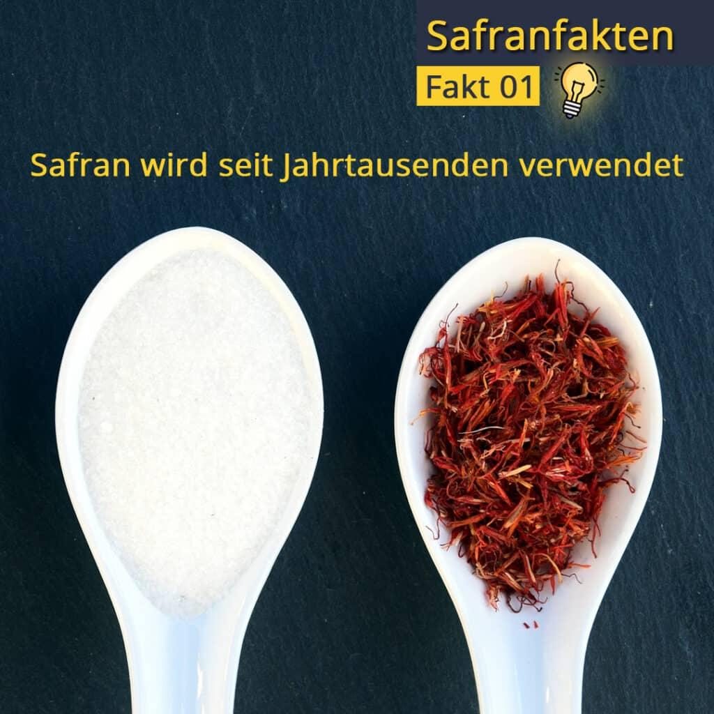 Safran und Salz auf Löffeln